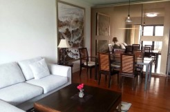 Lakeville regency apartment for rent in Xintiandi
