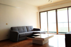 IKEA style 3br apartment in One Park Avenue for rent