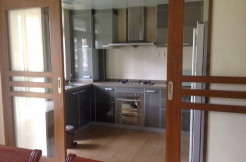 Ladoll international flat for rent in Jingan area