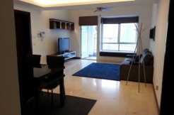 Large size flat in Central Park Xintiandi for rent