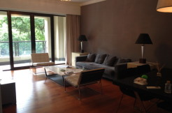 Modern 3 bedroom apartment in Lakeville Regency Xintiandi for rent