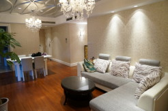 Nice deco modern flat in Lakeville Regency in Xintiandi for rent