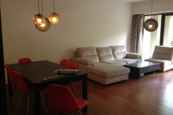 modern apartment in lakeville regency in Shanghai xintiandi for rent expat housing (1)