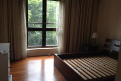 modern apartment in lakeville regency in Shanghai xintiandi for rent expat housing (2)