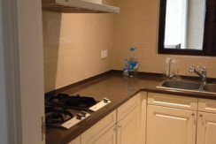 modern apartment in lakeville regency in Shanghai xintiandi for rent expat housing (4)
