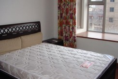 xinitandi apartment Lakeville L10(3)