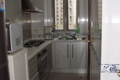 xinitandi apartment Lakeville L10(5)
