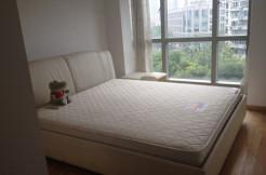 2br apartment in One Park Avenue, Jingan