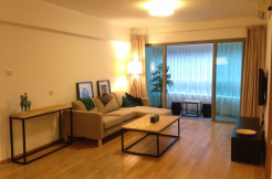 One park Avenue for rent in Jingan area