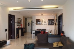 Apartment for expats in Central Park Xintiandi