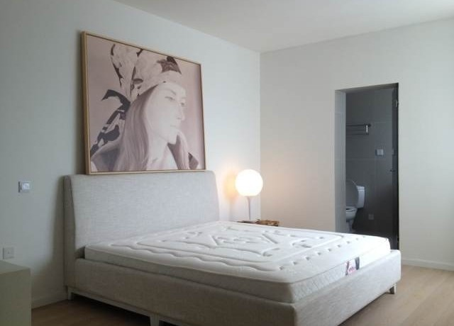 modern apartment in high rise central residences in former french concession old town in shanghai for rent  (2)