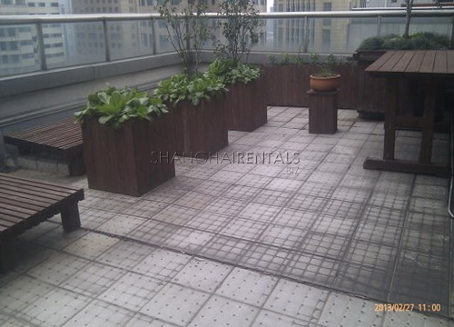 moder apartment in central park for rent rooftop terrace (1)