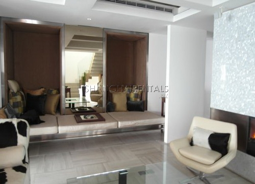 moder apartment in central park for rent rooftop terrace (2)