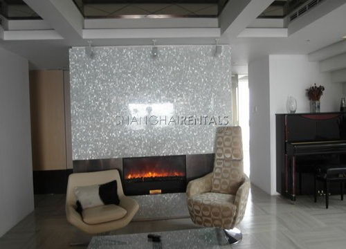 moder apartment in central park for rent rooftop terrace (4)