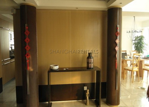 moder apartment in central park for rent rooftop terrace (5)