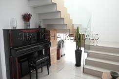 moder apartment in central park for rent rooftop terrace (6)