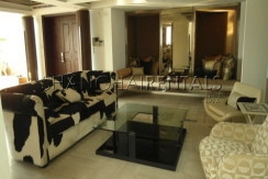 moder apartment in central park for rent rooftop terrace (8)