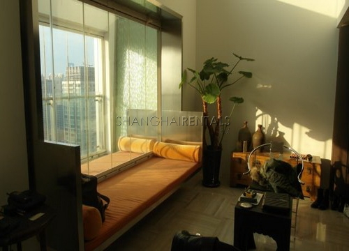 moder apartment in central park for rent rooftop terrace (9)