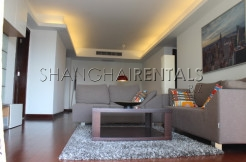 3br modern flat in Central Residences