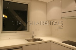 modern apartment for rent in shanghai(5)