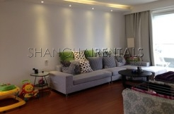 Big Apartment in Xintiandi Area