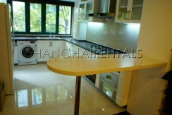 Serviced apartment for Rent in Shanghai (2)