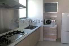 lane house high rise apartment at  8 park avenue of jingan district of shanghai for  rent4