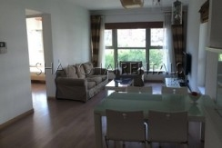 lane house high rise apartment at  8 park avenue of jingan district of shanghai for  rent7