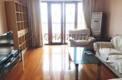 3 Br Apartment at International Plaza in Gubei