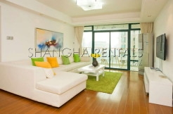 3 Br Apartment in Xujiahui for Rent