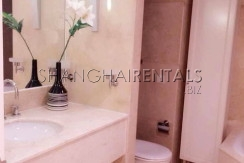 Top of city for expats for rent in Jingan 4