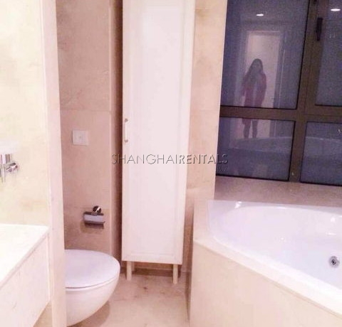 Top of city for expats for rent in Jingan 5