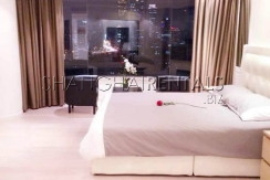 Top of city for expats for rent in Jingan 7