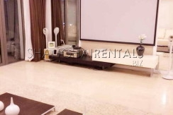 Top of city for expats for rent in Jingan 8