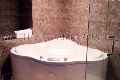 Hengshan rd apartment in French Concession For Rent (3)