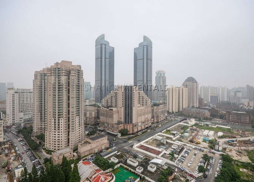 1-bedroom-apartment-in-xujiahui-in-shanghai-for-rent1