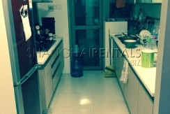 8 Park Avenue in Jing'an Temple for Rent (14)